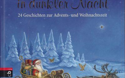 Weihnachtsstern in dunkler Nacht